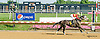 Lady Con Con winning at Delaware Park on 8/3/15