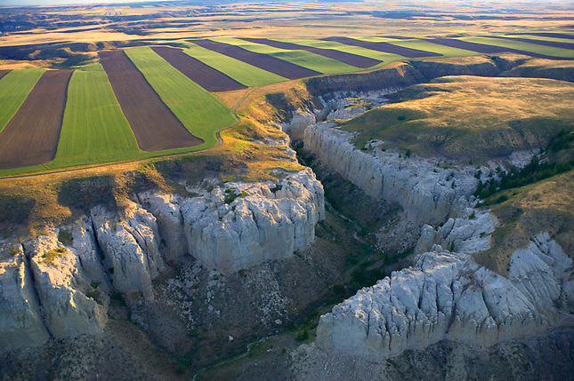 White Cliffs and cultivated fields