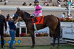 DEL MAR, CA  AUGUST 17:   #7 Fighting Mad, ridden by Joseph Talamo, in the winners circle after winning the Torrey Pines Stakes (Grade lll) on August 17, 2019 at Del Mar Thoroughbred Club in Del Mar, CA. Photo by Casey Phillips/Eclipse Sportswire/CSM)