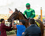December 1 2018: #6 Raging Bull, ridden by Joel Rosario, returns to the connections after winning the Hollywood Derby (Grade 1) on December 1, 2018, at Del Mar Thoroughbred Club in Del Mar, CA.