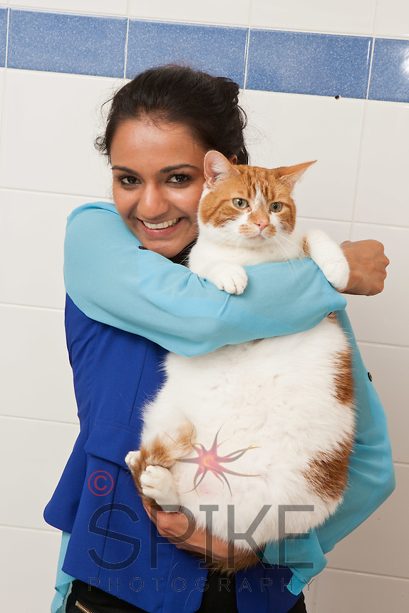 Prince the cat is overweight, so his owner Farrah Allarakha (blue top) and sister Farzila (black dress) spoke to staff at their local PDSA Pet Hospital. Veterinary Nurse  Sue Bartlett (brunette) and Senior Veterinary Surgeon Lorna Clarke (blonde) checked out Prince before starting the diet.