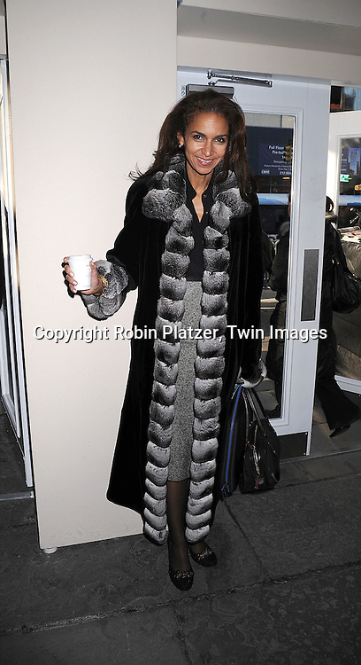 Susan Fales-Hill..arriving at The Mercedes-Benz Fashion Week New York..Fall 2008 Collections of Tracy Reese and Diane von Furstenberg on February 3, 2008 in New York City in ..Bryant Park. ..Robin Plater, Twin Images....212-935-0770