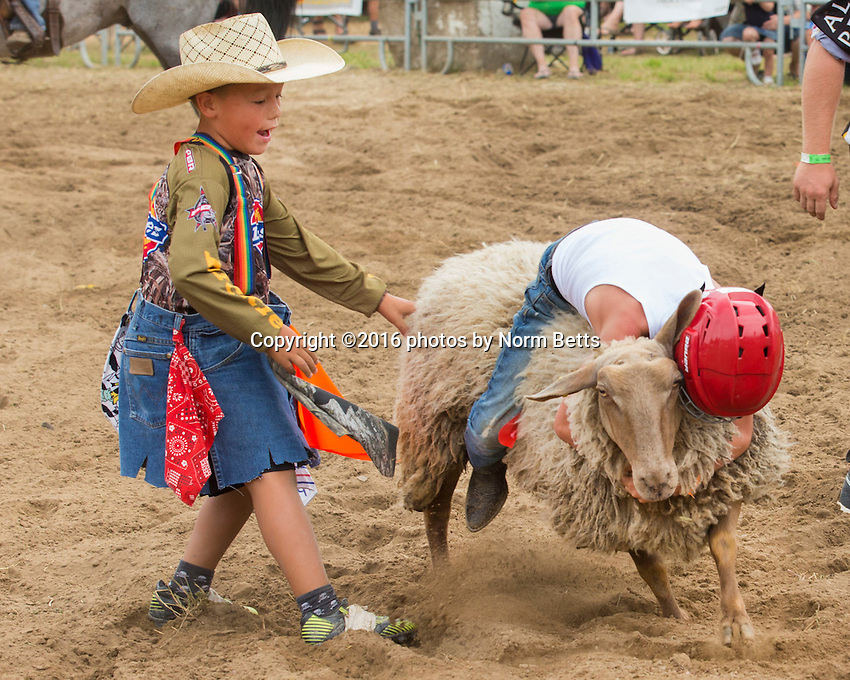 RAM Rodeo 2016 at Tweed, Ontario, Canada<br /> July 29, 30, 31, 2016<br /> &copy;2016 photos by Norm Betts<br /> normbetts@canadianphotographer.com