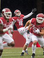 Hawgs Illustrated/BEN GOFF <br /> Blake Johnson, Arkansas punter, punts to Mississippi State in the fourth quarter Saturday, Nov. 18, 2017, at Reynolds Razorback Stadium in Fayetteville.