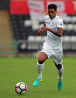 Kyle Naughton of Swansea City during the Premier League match between Swansea City and Hull City at the Liberty Stadium, Swansea on Saturday August 20th 2016