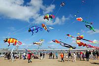 Vlieger festival in Scheveningen