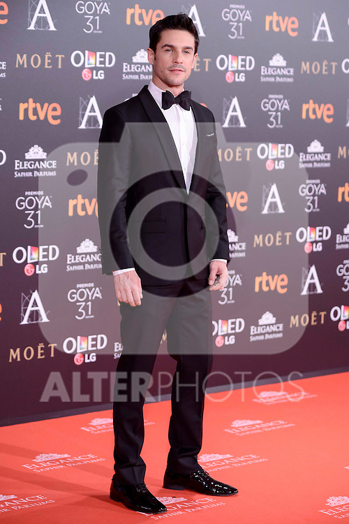 Alejo Sauras attends to the Red Carpet of the Goya Awards 2017 at Madrid Marriott Auditorium Hotel in Madrid, Spain. February 04, 2017. (ALTERPHOTOS/BorjaB.Hojas)