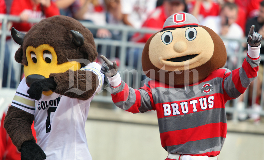 Ohio State Buckeyes against Colorado in their NCAA College football game at Ohio Stadium, September 24, 2011.  (Dispatch photo by Eric Albrecht)