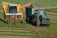 GERMANY, Parchim, harvest of sugar beets in autumn / DEUTSCHLAND, Gut Parchim, Ernte von Zuckerrueben im Herbst mit Kleine Erntemaschine und John Deere Traktor