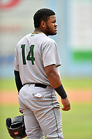 Augusta GreenJackets designated hitter Heliot Ramos (14) during a game against the Asheville Tourists at McCormick Field on August 19, 2018 in Asheville, North Carolina. The Tourists defeated the GreenJackets 6-3. (Tony Farlow/Four Seam Images)