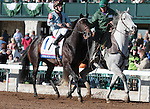 April 04, 2015:  Ocho Ocho Ocho and jockey Santiago Gonzalez in the 91st running of the Toyota Blue Grass Stakes Grade 1 $1,000,000 at Keeneland Race Course for owner DP Racing and trainer James Cassidy.   Candice Chavez/ESW/CSM