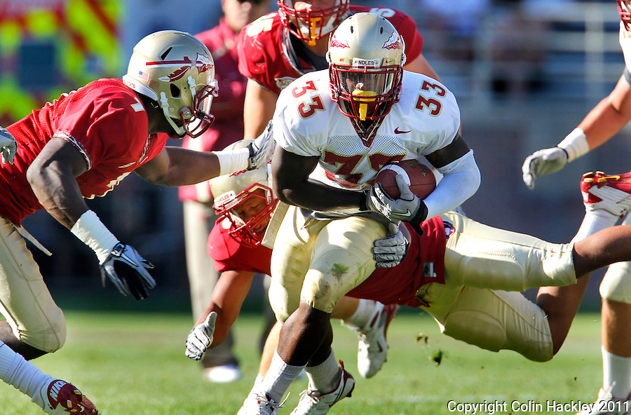 TALLAHASSEE, FLA. 4/16/11-FSUG&G041611 CH-Garnet's Christian Jones, left, and Nigel Terrell catch Gold's Ty Jones during second half action in the Florida State University Garnet and Gold game Saturday in Tallahassee. Garnet beat Gold 19-17..COLIN HACKLEY PHOTO