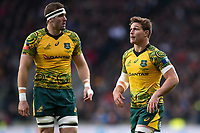 Michael Hooper of Australia looks on. Quilter International match between England and Australia on November 24, 2018 at Twickenham Stadium in London, England. Photo by: Patrick Khachfe / Onside Images