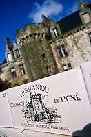 Europe/France/Pays de la Loire/49/Maine-et-Loire/Tigne: Château de Tigne propriété de Gérard Depardieu