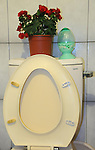 Roses on a toilet.