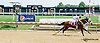 Sizzling Quatorze winning at Delaware Park on 7/31/14