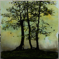 Green gold sky with trees silhouette in encaustic photo transfer by Jeff League.