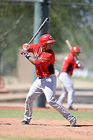 Cincinnati Reds catcher Jose Duarte (67) during an instructional league game against the Cleveland Indians on September 28, 2013 at Goodyear Training Complex in Goodyear, Arizona.  (Mike Janes/Four Seam Images)