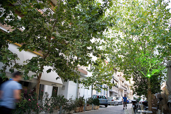 A tree-lined side street near the Acropolis in Athens, Greece on July 2, 2013.