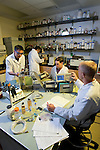Dr. Bill Pitt's lab.Engineering and Technology ..August 14, 2006..Photography by Mark A. Philbrick..Copyright BYU Photo 2006 .All Rights Reserved .photo@byu.edu  (801)422-7322..