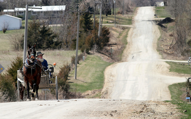 An Amish man rides a horse carriage south of Drakesville in southeast Iowa's Davis County.   It is among only a handful of rural Iowa counties in the 2010 Census to gain population (2.4 percent).  Much of that population growth is due to a steadily growing Amish population.  (Christopher Gannon/The Des Moines Register)
