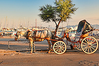 A horse drawn carriage in the port of Aegina island, Greece