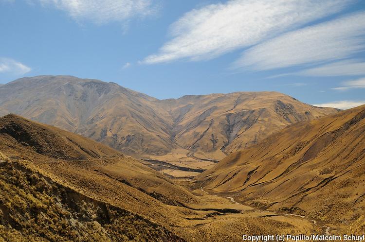 View of Los Cardones National Park, Argentina