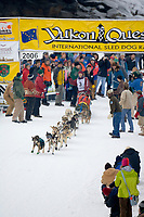 Musher Regina Wycoff in Fairbanks on the Chena River at the start of the 1000 mile Yukon Quest sled dog race 2006, between Fairbanks, Alaska and Whitehorse, Yukon. Dubbed the toughest dogsled race in the world.