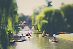 tourists spend a summers afternoon punting on the river cam in cambridge