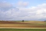 Europa, DEU, Deutschland, Rheinland-Pfalz, Saargau, Agrarlandschaft, Baum, Feld, Acker, Himmel, Wolken, Kategorien und Themen, Natur, Umwelt, Landschaft, Jahreszeiten, Stimmungen, Landschaftsfotografie, Landschaften, Landschaftsphoto, Landschaftsphotographie, Tourismus, Touristik, Touristisch, Touristisches, Urlaub, Reisen, Reisen, Ferien, Urlaubsreise, Freizeit, Reise, Reiseziele, Ferienziele....[Fuer die Nutzung gelten die jeweils gueltigen Allgemeinen Liefer-und Geschaeftsbedingungen. Nutzung nur gegen Verwendungsmeldung und Nachweis. Download der AGB unter http://www.image-box.com oder werden auf Anfrage zugesendet. Freigabe ist vorher erforderlich. Jede Nutzung des Fotos ist honorarpflichtig gemaess derzeit gueltiger MFM Liste - Kontakt, Uwe Schmid-Fotografie, Duisburg, Tel. (+49).2065.677997, ..archiv@image-box.com, www.image-box.com]