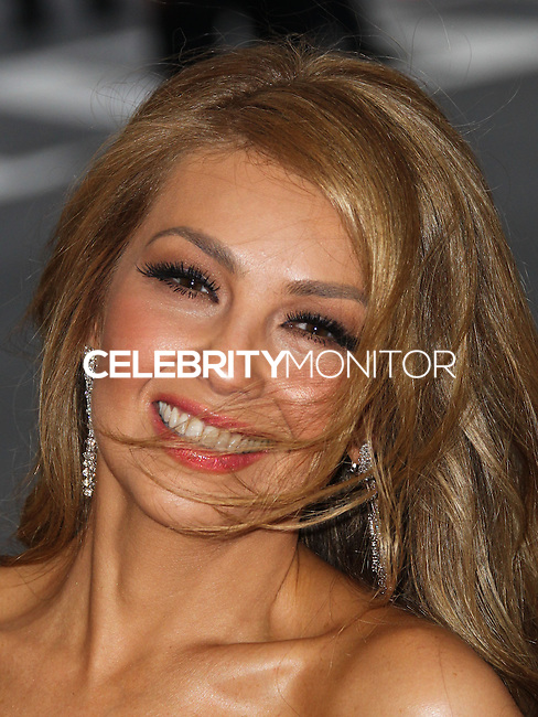 """NEW YORK CITY, NY, USA - MAY 05: Thalia at the """"Charles James: Beyond Fashion"""" Costume Institute Gala held at the Metropolitan Museum of Art on May 5, 2014 in New York City, New York, United States. (Photo by Xavier Collin/Celebrity Monitor)"""