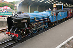 Hythe and Romney railway 2014