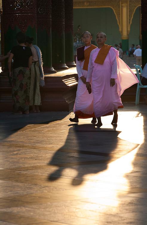 Buddhist nun at the buddhist temple in Yangon