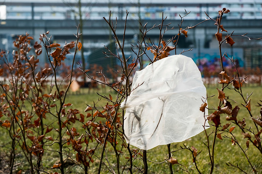 Nederland, Amsterdam, 20180302<br /> zwerfafval blijft hangen in struikjes.<br /> Plastic afval<br /> Foto: (c) Michiel Wijnbergh