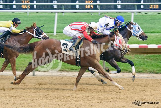 Avanzando winning at Delaware Park on 5/30/15