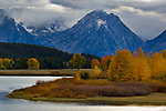 Aspen trees and fall storm clouds over mountain, at Oxbow Bend, Snake River, Grand Teton National Park, Wyoming