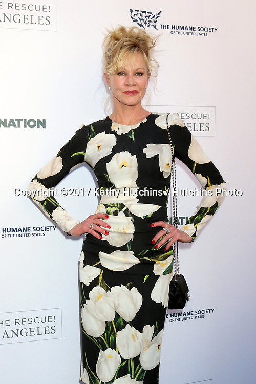 LOS ANGELES - APR 22:  Melanie Griffith at the 2017 The Humane Society Gala at Parmount Studios on April 22, 2017 in Los Angeles, CA