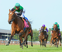 07-21-17 Lake George Stakes (III) (Saratoga)