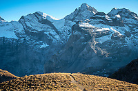 A perfect piece of single track on the trail from Lauterbrunnen to Schilthorn, Switzerland