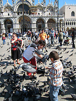 The amazing pigeon people of St. Mark's Square, Venice.