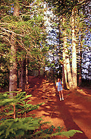 Hiker at St. Louis Heights on the Island of Oahu