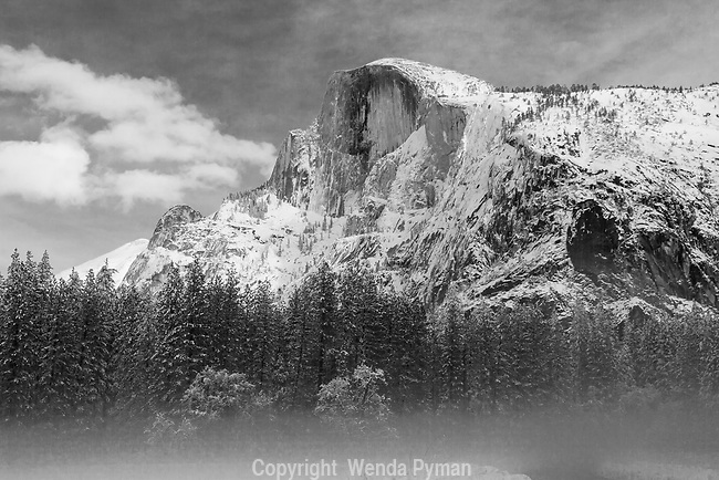 Majestic snow-covered Half Dome in the early morning mist. The clouds add drama as the mist plays in the meadow.