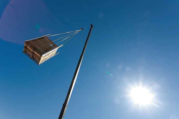 Scalo Solar - the plantings for a green roof are delivered via crane.