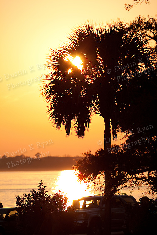 Charleston South Carolina Lowcountry Sunset on the Battery Sunset Palmetto Palm tree