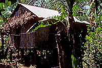 Philippines: Agoo--Traditional House on Pylons. Photo '82.