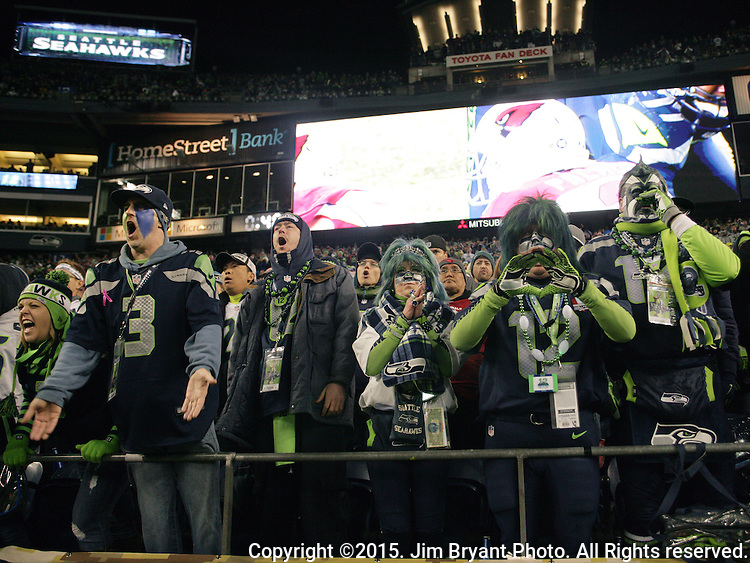 Seattle Seahawks fans cheer against the Arizona Cardinals at CenturyLink Field in Seattle, Washington on November 15, 2015. The Cardinals beat the Seahawks 39-32.   ©2015. Jim Bryant photo. All Rights Reserved.