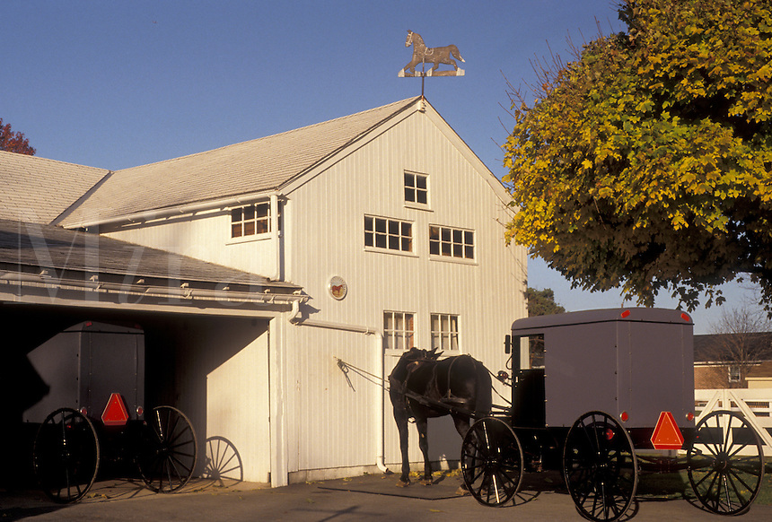 AJ3267, amish, horse and buggy, farm, Amish Country, Lancaster County, Pennsylvania, Amish horse and covered buggy stand outside a barn in Intercourse in Pennsylvania Dutch Country in the state of Pennsylvania.