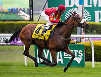 NEW YORK, NY - MAY 13: #4 Zhukova ridden by John Velazquez easily wins the Man O' War Stakes, at Belmont Park on May 13, 2017 in Elmont, New York. (Photo by Dan Hearyi/Eclipse Sportswire/Getty Images)