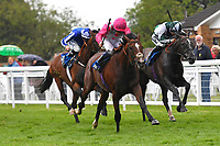 Winner of The Sorvio Insurance Brokers Maiden Stakes Mankayan ridden by Kieran Shoemark and trained by Charlie Fellows during Evening Racing at Salisbury Racecourse on 11th June 2019