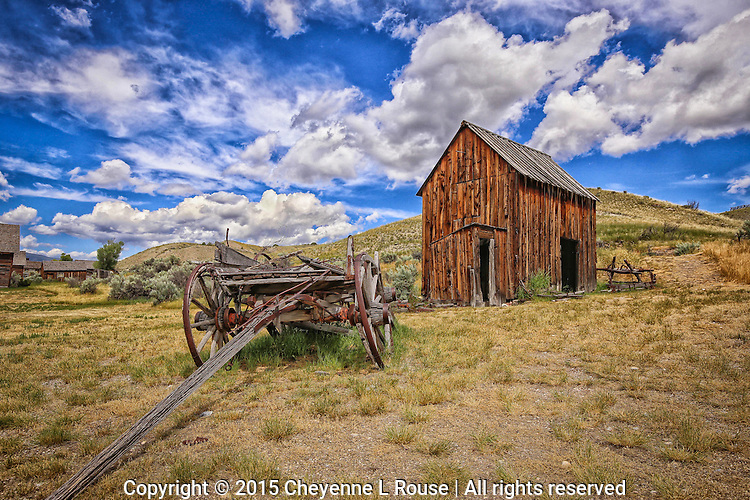 Bannack Goodness - Montana